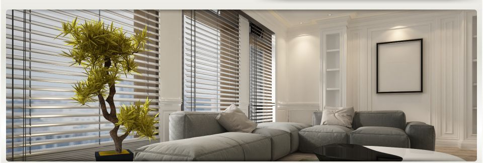 Blinds in modern living room